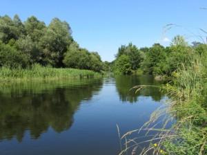Оскол-река_