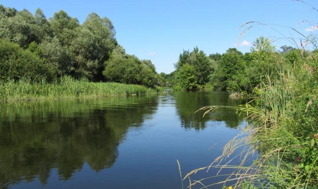 Река Оскол_